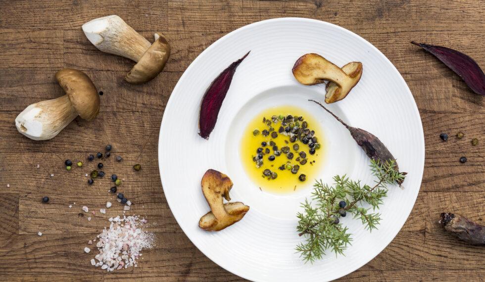 METTÄ Juniper and mushrooms_Aino Huotari
