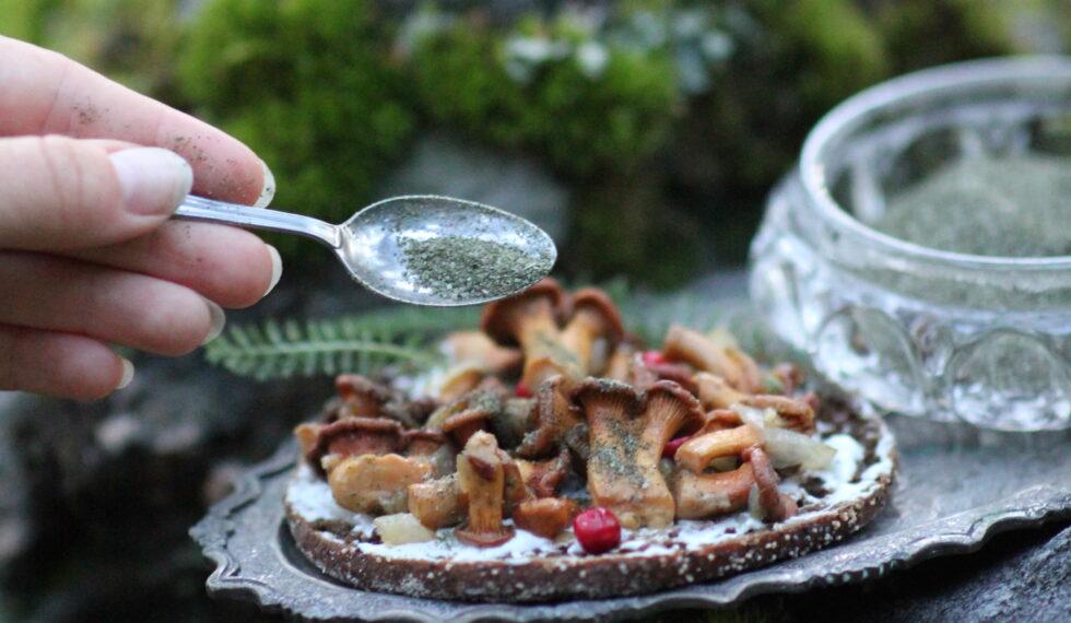 METTÄ Seasoning mushrooms bread